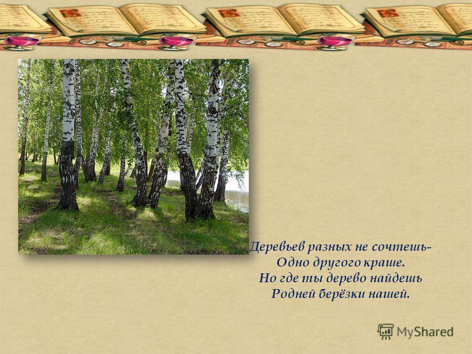 Деревьев разных не сочтешь- Одно другого краше. Но где ты дерево найдешь Родней берёзки нашей.