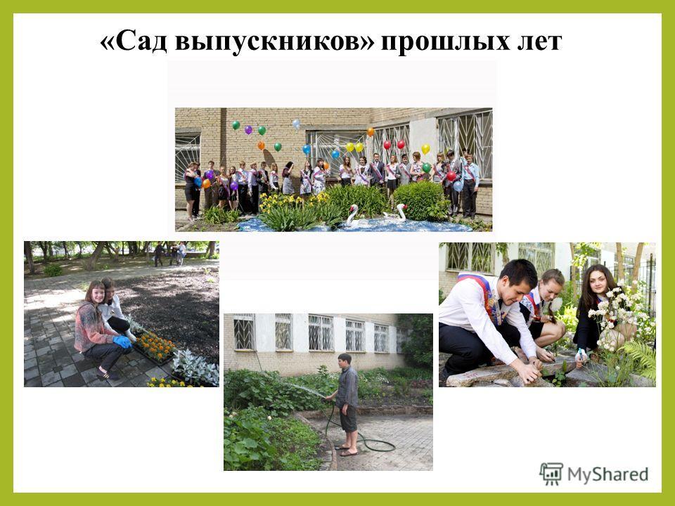 «Сад выпускников» прошлых лет