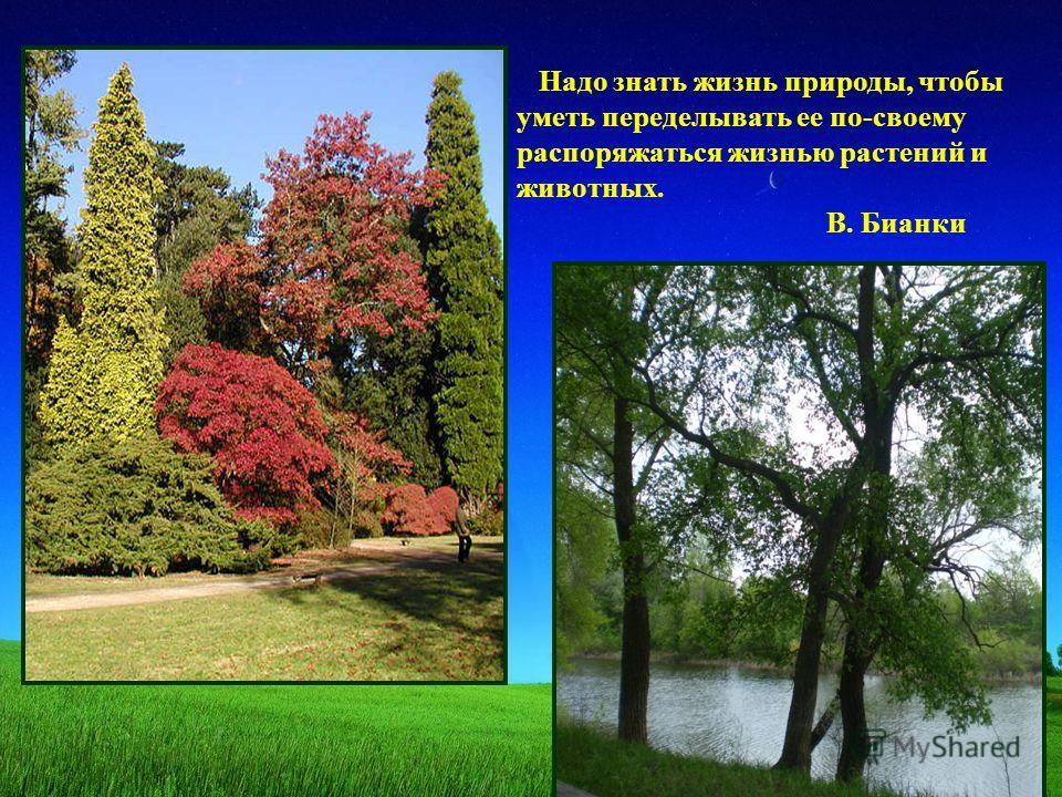 Надо знать жизнь природы, чтобы уметь переделывать ее по-своему распоряжаться жизнью растений и животных. В. Бианки