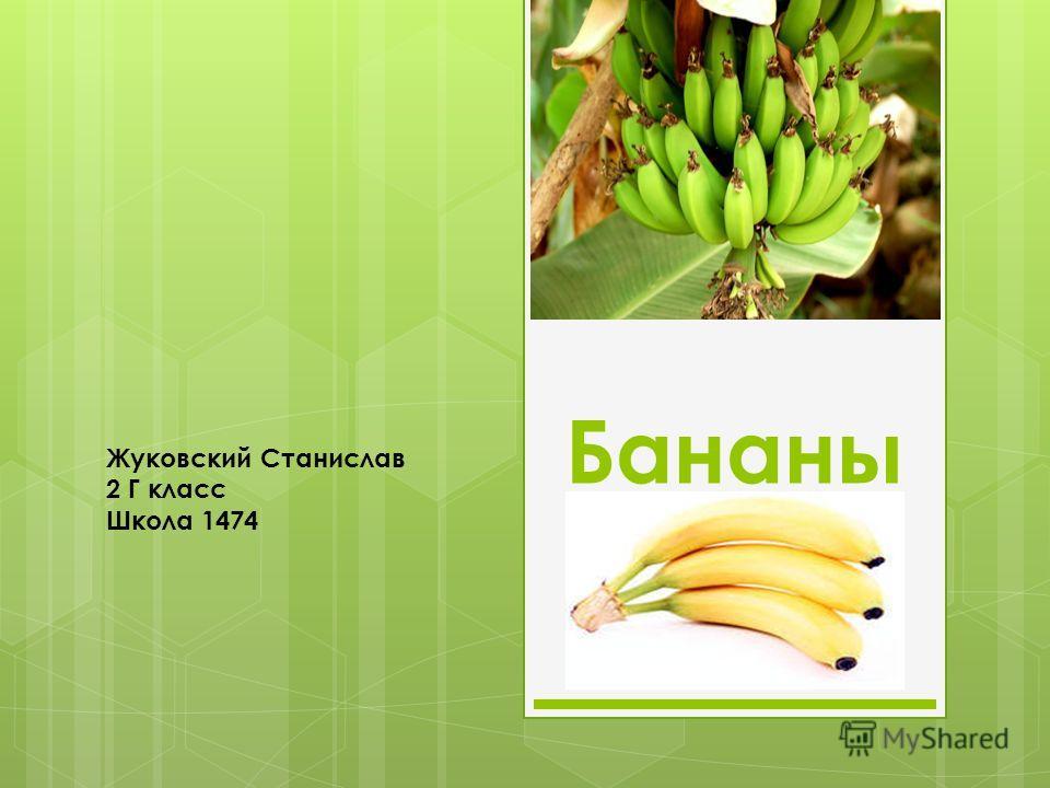 Бананы Жуковский Станислав 2 Г класс Школа 1474