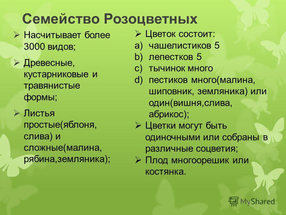 Семейство Розоцветных Насчитывает более 3000 видов; Древесные, кустарниковые и травянистые формы; Листья простые(яблоня, слива) и сложные(малина, рябина,земляника); Цветок состоит: a)чашелистиков 5 b)лепестков 5 c)тычинок много d)пестиков много(малин