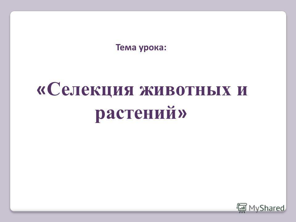 Тема урока: « Селекция животных и растений »