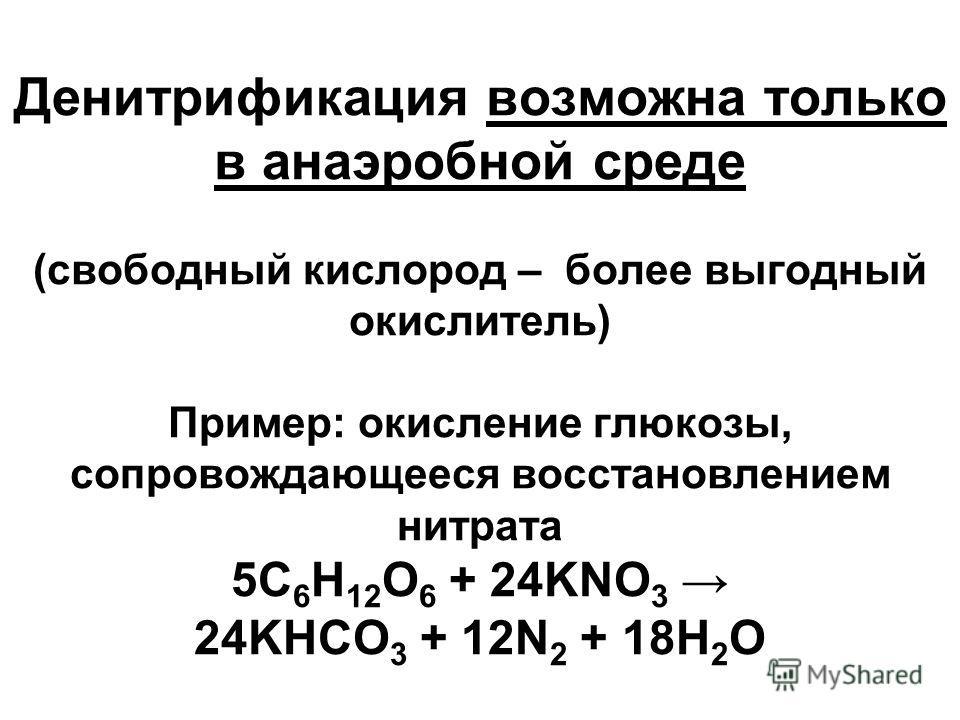 Денитрификация возможна только в анаэробной среде (свободный кислород – более выгодный окислитель) Пример: окисление глюкозы, сопровождающееся восстановлением нитрата 5C 6 H 12 O 6 + 24KNO 3 24KHCO 3 + 12N 2 + 18H 2 O