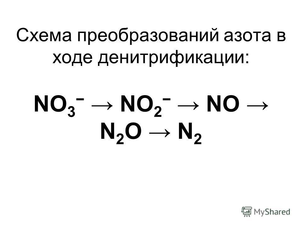 Схема преобразований азота в ходе денитрификации: NO 3 NO 2 NO N 2 O N 2