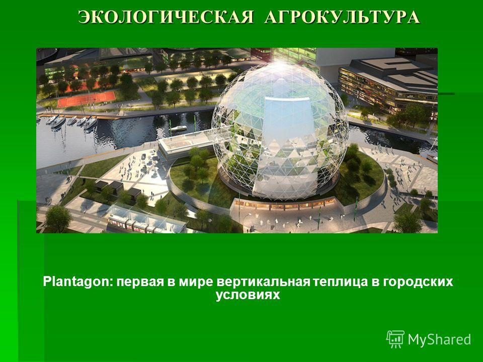 ЭКОЛОГИЧЕСКАЯ АГРОКУЛЬТУРА Plantagon: первая в мире вертикальная теплица в городских условиях