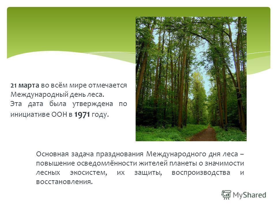21 марта во всём мире отмечается Международный день леса. Эта дата была утверждена по инициативе ООН в 1971 году. Основная задача празднования Международного дня леса – повышение осведомлённости жителей планеты о значимости лесных экосистем, их защит