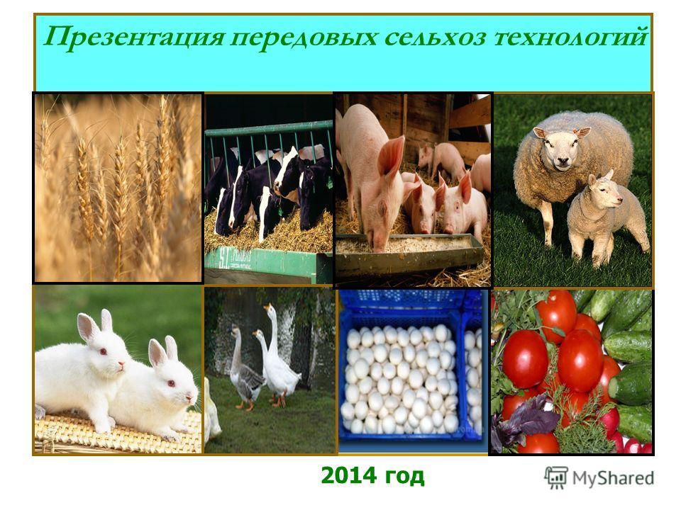 Презентация передовых сельхоз технологий 2014 год