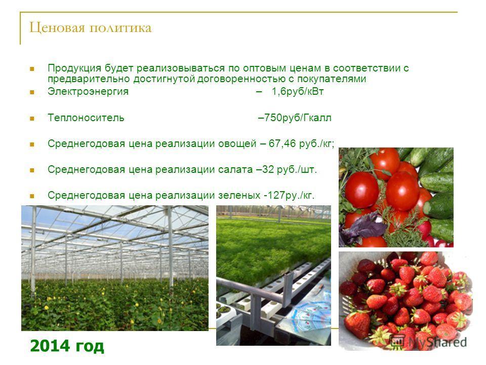 Ценовая политика Продукция будет реализовываться по оптовым ценам в соответствии с предварительно достигнутой договоренностью с покупателями Электроэнергия – 1,6 руб/к Вт Теплоноситель –750 руб/Гкалл Среднегодовая цена реализации овощей – 67,46 руб./