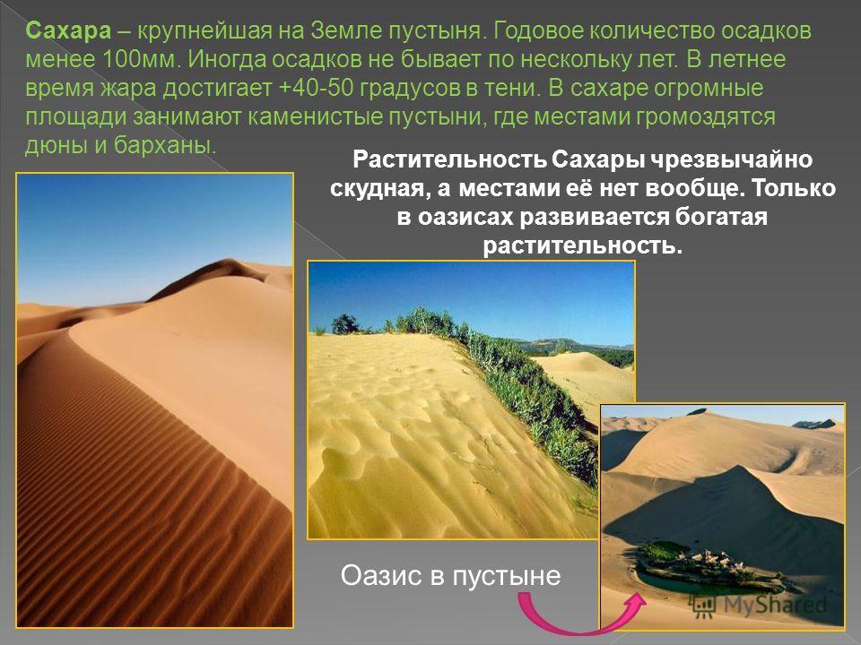 Сахара – крупнейшая на Земле пустыня. Годовое количество осадков менее 100 мм. Иногда осадков не бывает по нескольку лет. В летнее время жара достигает +40-50 градусов в тени. В сахаре огромные площади занимают каменистые пустыни, где местами громозд