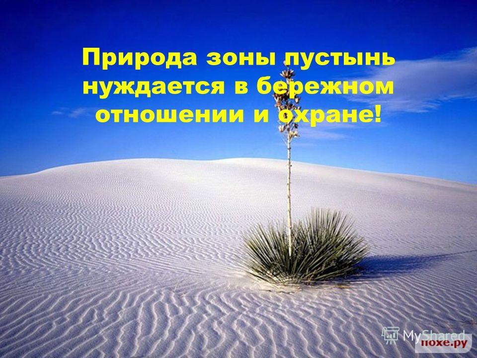 Природа зоны пустынь нуждается в бережном отношении и охране!