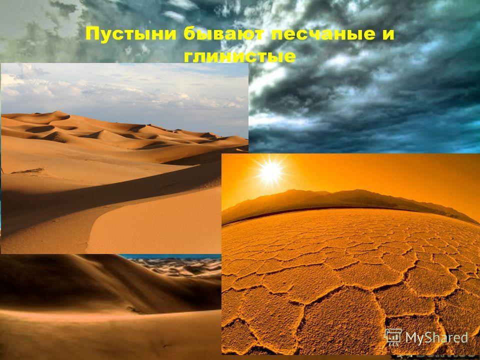 Пустыни бывают песчаные и глинистые
