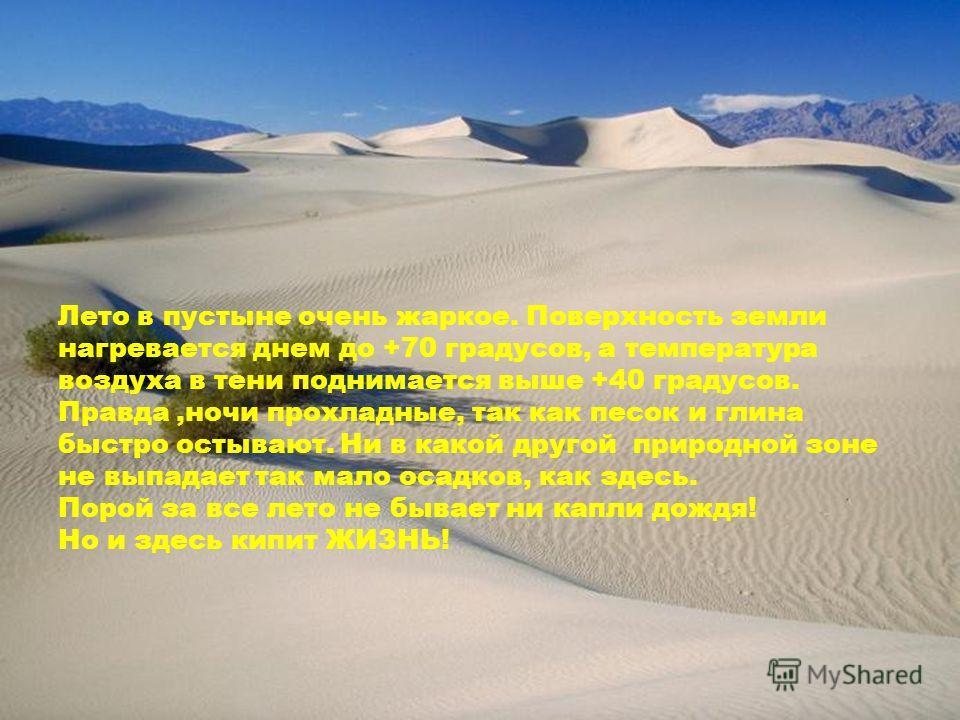 Лето в пустыне очень жаркое. Поверхность земли нагревается днем до +70 градусов, а температура воздуха в тени поднимается выше +40 градусов. Правда,ночи прохладные, так как песок и глина быстро остывают. Ни в какой другой природной зоне не выпадает т
