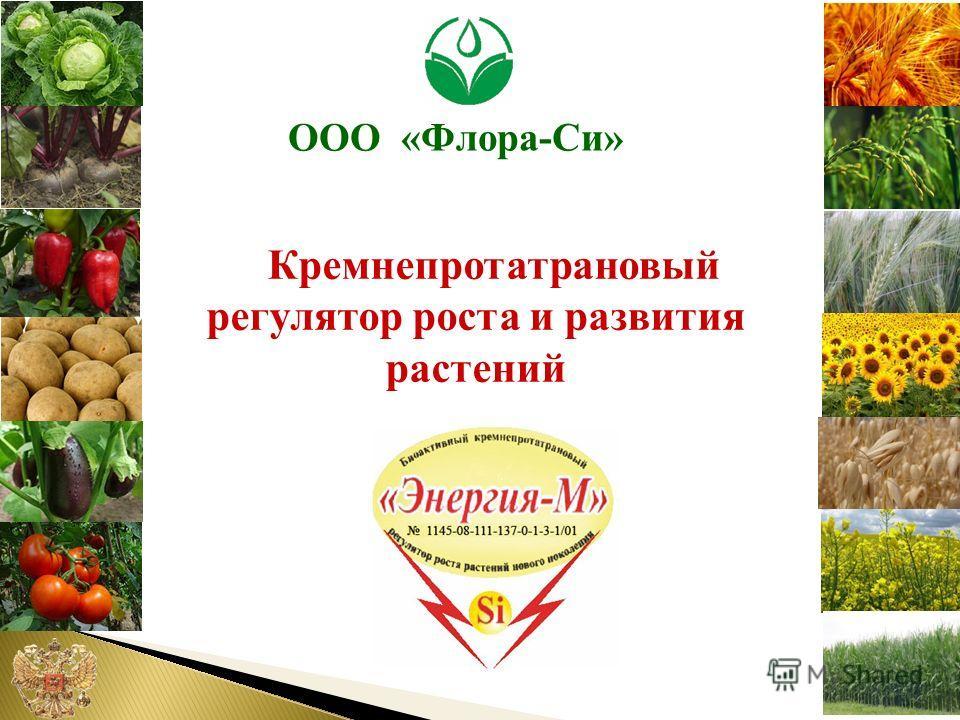 Кремнепротатрановый регулятор роста и развития растений ООО «Флора-Си»