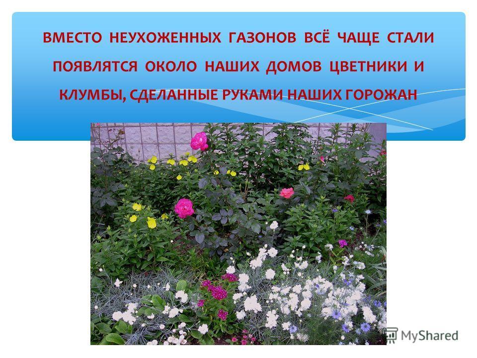 ВМЕСТО НЕУХОЖЕННЫХ ГАЗОНОВ ВСЁ ЧАЩЕ СТАЛИ ПОЯВЛЯТСЯ ОКОЛО НАШИХ ДОМОВ ЦВЕТНИКИ И КЛУМБЫ, СДЕЛАННЫЕ РУКАМИ НАШИХ ГОРОЖАН Многие жители уже в этом, 2011 году, посадили цветы около домов
