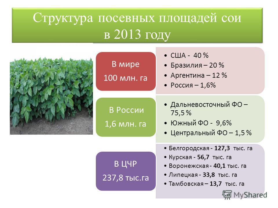 Структура посевных площадей сои в 2013 году США - 40 % Бразилия – 20 % Аргентина – 12 % Россия – 1,6% В мире 100 млн. га Дальневосточный ФО – 75,5 % Южный ФО - 9,6% Центральный ФО – 1,5 % В России 1,6 млн. га Белгородская - 127,3 тыс. га Курская - 56