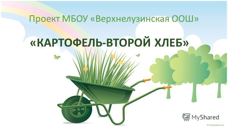 Проект МБОУ «Верхнелузинская ООШ» «КАРТОФЕЛЬ-ВТОРОЙ ХЛЕБ»