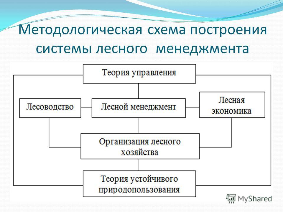 Методологическая схема построения системы лесного менеджмента