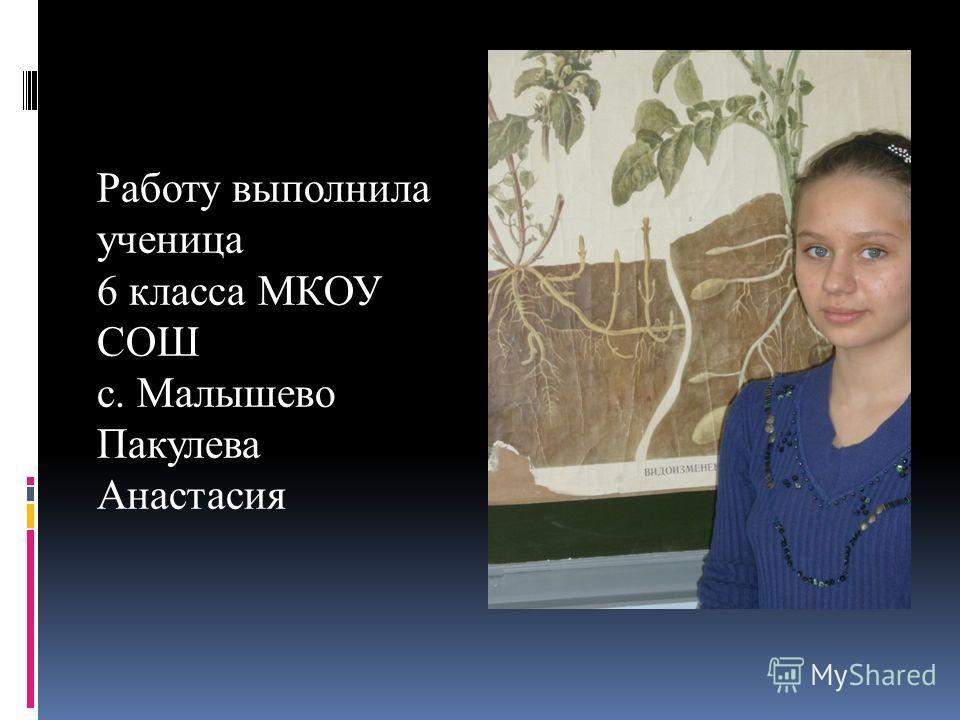 Работу выполнила ученица 6 класса МКОУ СОШ с. Малышево Пакулева Анастасия