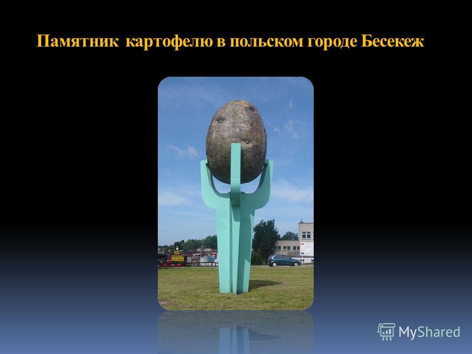 Памятник картофелю в польском городе Бесекеж