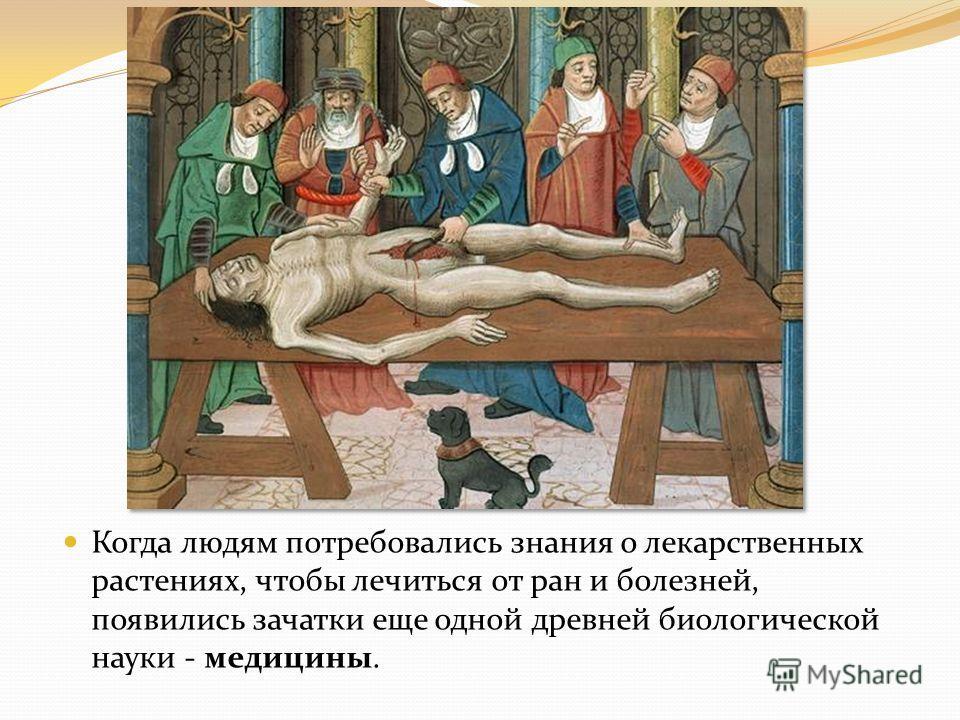 Когда людям потребовались знания о лекарственных растениях, чтобы лечиться от ран и болезней, появились зачатки еще одной древней биологической науки - медицины.