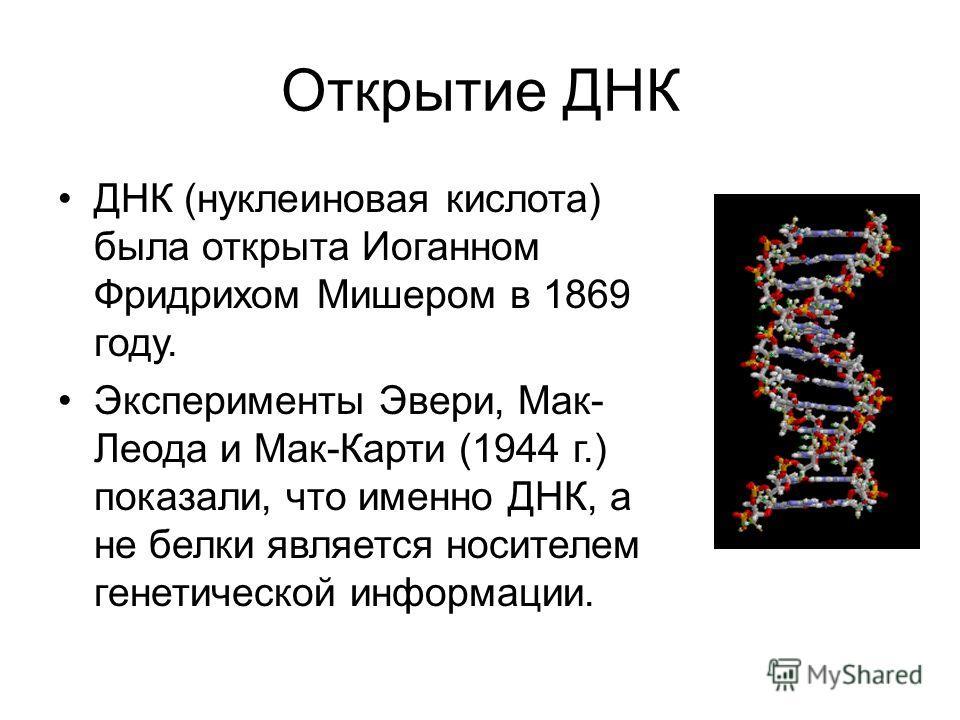 Открытие ДНК ДНК (нуклеиновая кислота) была открыта Иоганном Фридрихом Мишером в 1869 году. Эксперименты Эвери, Мак- Леода и Мак-Карти (1944 г.) показали, что именно ДНК, а не белки является носителем генетической информации.