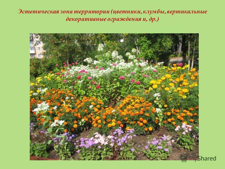 Эстетическая зона территории (цветники, клумбы, вертикальные декоративные ограждения и, др.)