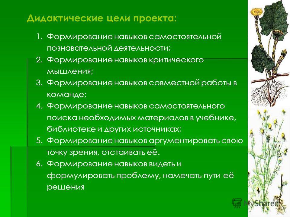 Дидактические цели проекта: 1.Формирование навыков самостоятельной познавательной деятельности; 2.Формирование навыков критического мышления; 3.Формирование навыков совместной работы в команде; 4.Формирование навыков самостоятельного поиска необходим