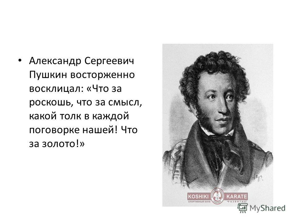 Александр Сергеевич Пушкин восторженно восклицал: «Что за роскошь, что за смысл, какой толк в каждой поговорке нашей! Что за золото!»