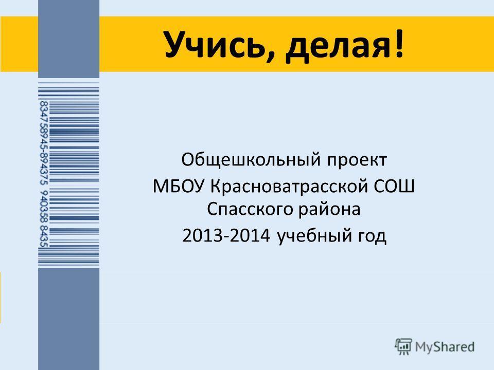 Учись, делая! Общешкольный проект МБОУ Красноватрасской СОШ Спасского района 2013-2014 учебный год