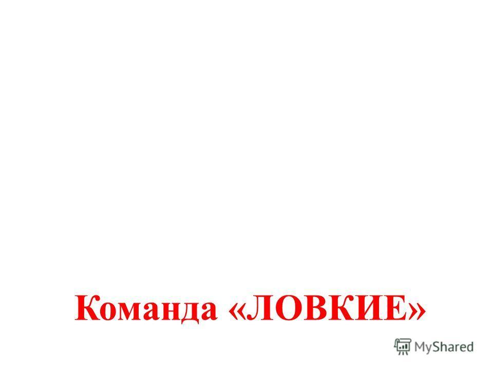 Команда «ЛОВКИЕ»