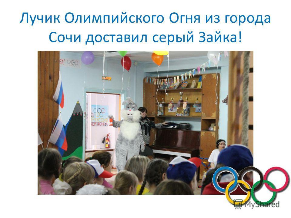 Лучик Олимпийского Огня из города Сочи доставил серый Зайка!
