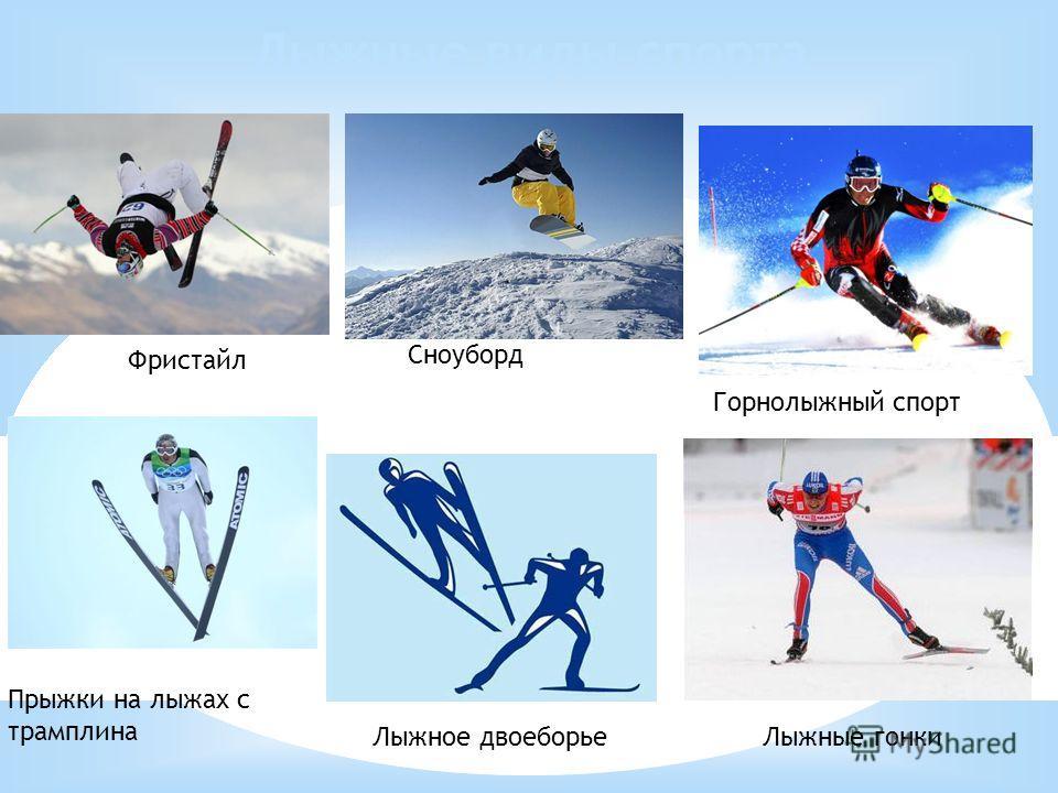 Лыжные виды спорта Сноуборд Горнолыжный спорт Лыжное двоеборье Прыжки на лыжах с трамплина Лыжные гонки Фристайл