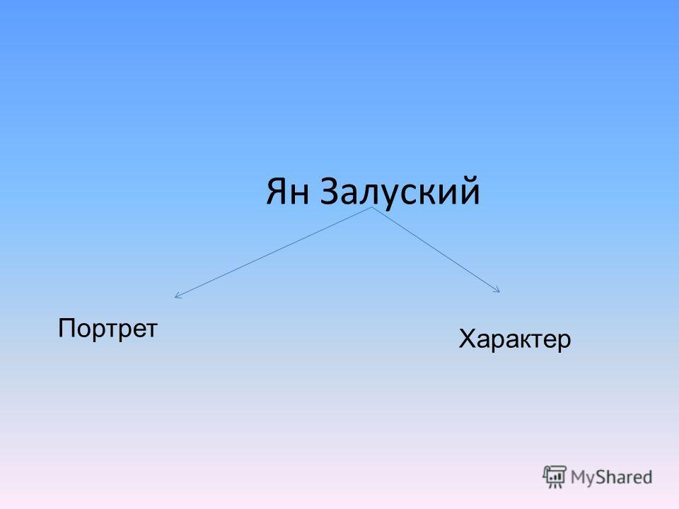 Ян Залуский Портрет Характер
