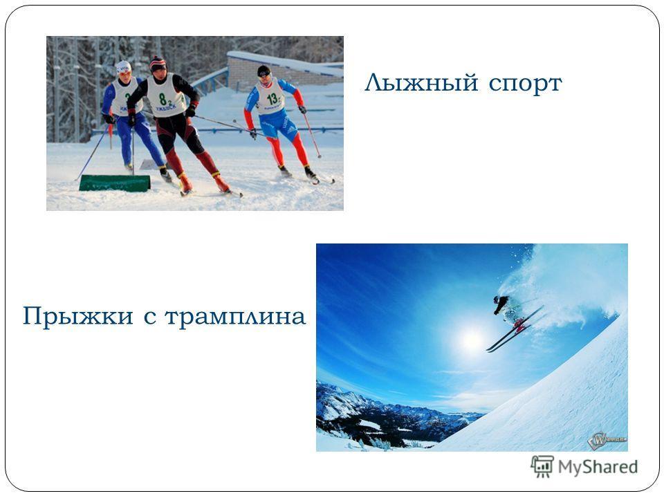 Лыжный спорт Прыжки с трамплина