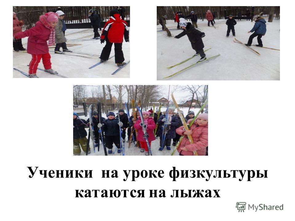 Ученики на уроке физкультуры катаются на лыжах