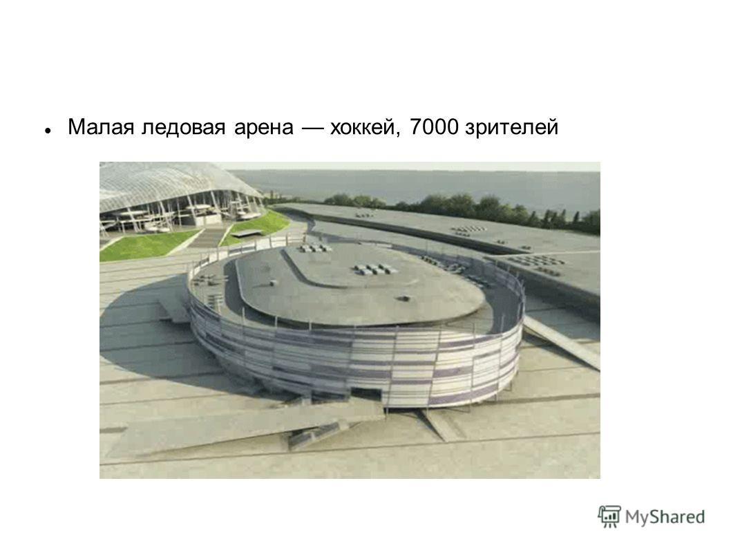 Малая ледовая арена хоккей, 7000 зрителей