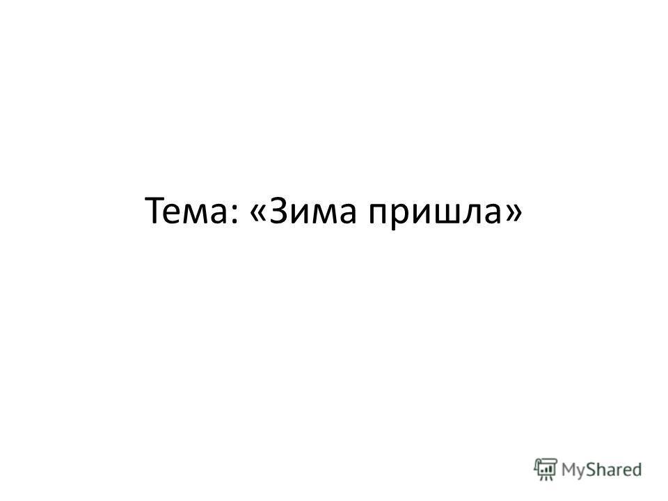 Тема: «Зима пришла»