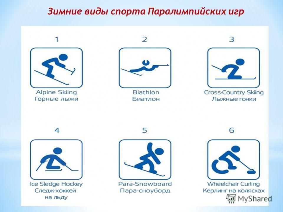 Зимние виды спорта Паралимпийских игр