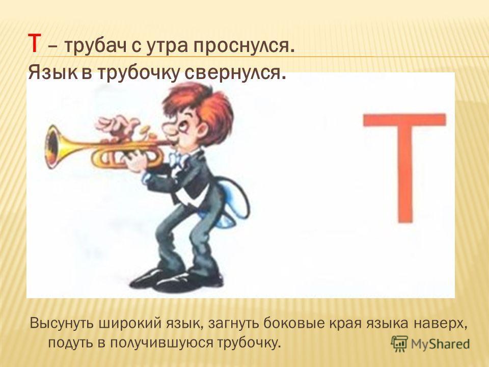 Высунуть широкий язык, загнуть боковые края языка наверх, подуть в получившуюся трубочку. Т – трубач с утра проснулся. Язык в трубочку свернулся.