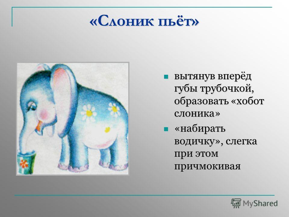 «Слоник пьёт» вытянув вперёд губы трубочкой, образовать «хобот слоника» вытянув вперёд губы трубочкой, образовать «хобот слоника» «набирать водичку», слегка при этом причмокивая «набирать водичку», слегка при этом причмокивая