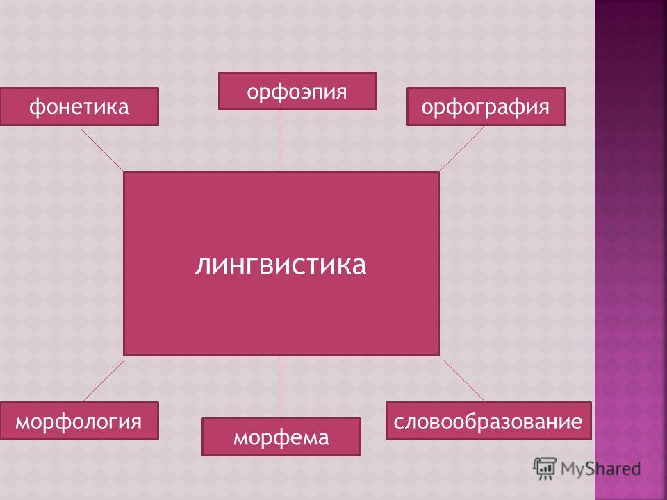 лингвистика морфема орфографияфонетика морфологиясловообразование орфоэпия