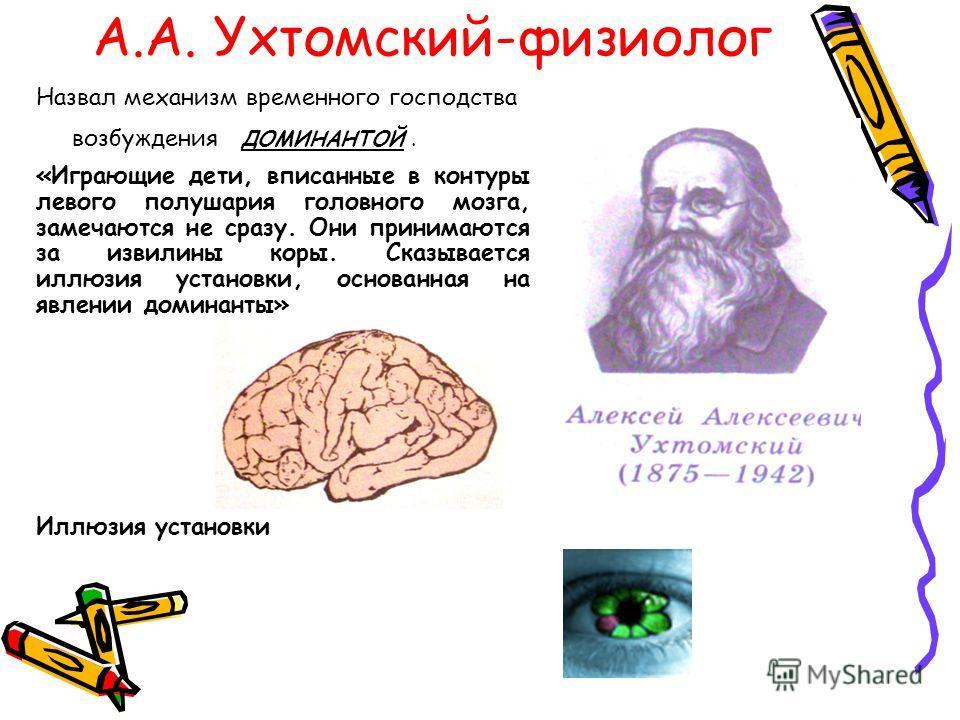А.А. Ухтомский-физиолог Назвал механизм временного господства возбуждения ДОМИНАНТОЙ. «Играющие дети, вписанные в контуры левого полушария головного мозга, замечаются не сразу. Они принимаются за извилины коры. Сказывается иллюзия установки, основанн
