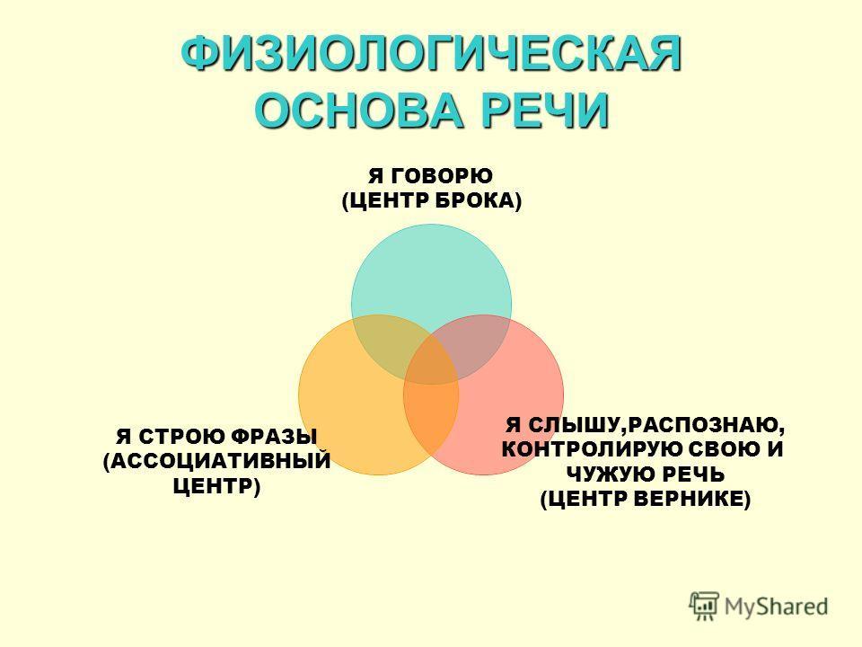 ФИЗИОЛОГИЧЕСКАЯ ОСНОВА РЕЧИ Я ГОВОРЮ (ЦЕНТР БРОКА) Я СЛЫШУ,РАСПОЗНАЮ, КОНТРОЛИРУЮ СВОЮ И ЧУЖУЮ РЕЧЬ (ЦЕНТР ВЕРНИКЕ) Я СТРОЮ ФРАЗЫ (АССОЦИАТИВНЫЙ ЦЕНТР)