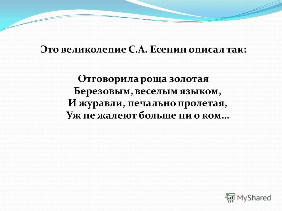 Это великолепие С.А. Есенин описал так: Отговорила роща золотая Березовым, веселым языком, И журавли, печально пролетая, Уж не жалеют больше ни о ком…