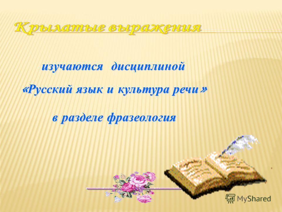 изучаются дисциплиной «Русский язык и культура речи» в разделе фразеология