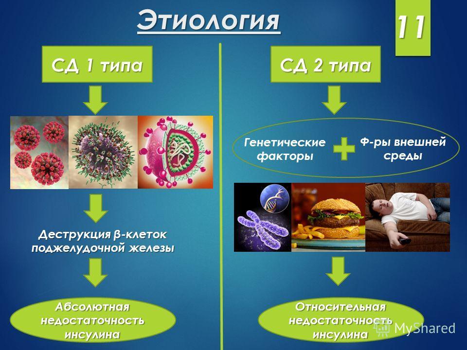 Этиология СД 1 типа Деструкция β-клеток поджелудочной железы Абсолютная недостаточность инсулина СД 2 типа Генетические факторы Ф-ры внешней среды Относительная недостаточность инсулина 11