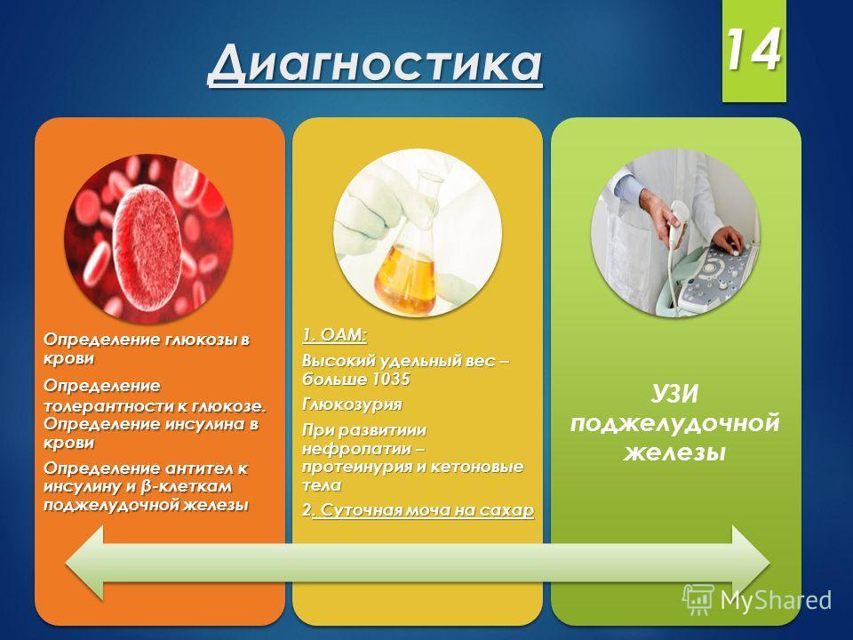 Определение глюкозы в крови Определение толерантности к глюкозе. Определение инсулина в крови Определение антител к инсулину и β-клеткам поджелудочной железы 1. ОАМ: Высокий удельный вес – больше 1035 Глюкозурия При развитиии нефропатии – протеинурия