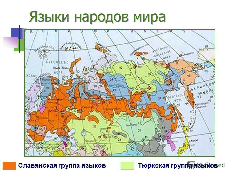 Языки народов мира Тюркская группа языков Славянская группа языков