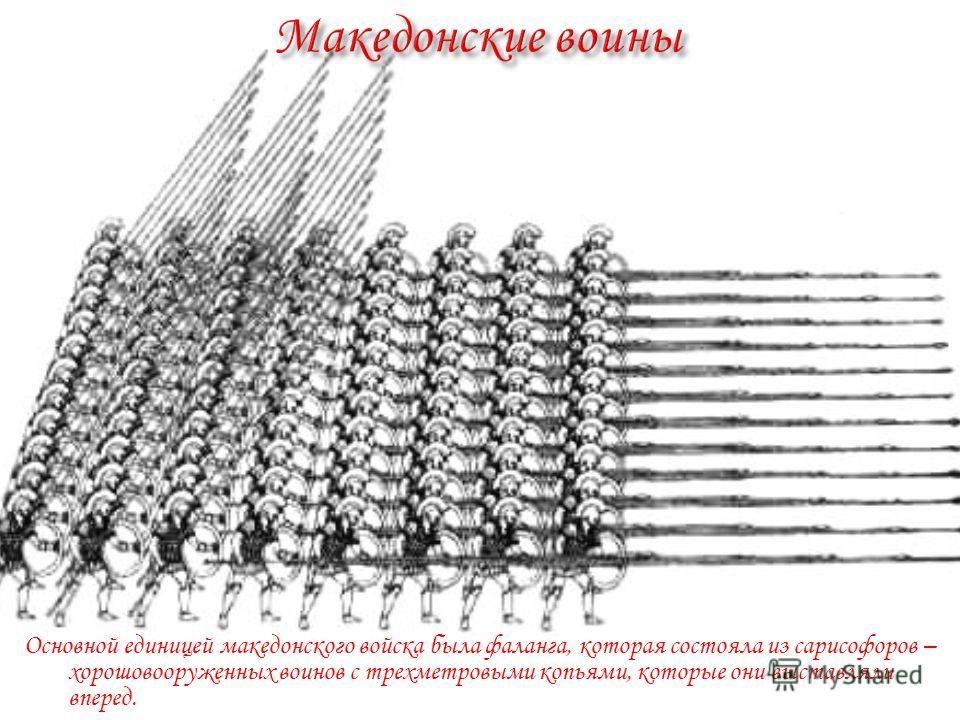 Основной единицей македонского войска была фаланга, которая состояла из сарисофоров – хорошовооруженных воинов с трехметровыми копьями, которые они выставляли вперед.