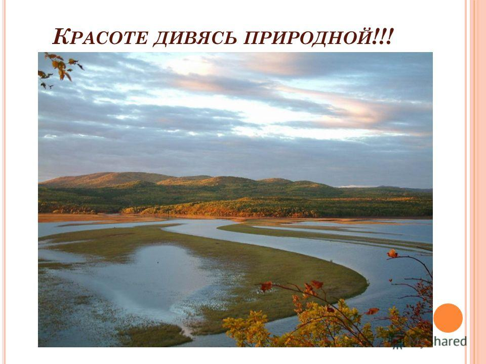 К РАСОТЕ ДИВЯСЬ ПРИРОДНОЙ !!!